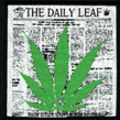Cannabis: Daily Leaf
